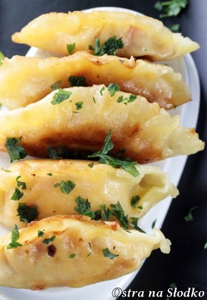pierogi z kurczakiem , chinskie pierozki , pierogi z miesem , najlepsze ciasto na pierogi , kuchnia chinska tajska, ostra na slodko , blog kulinarny , latwe przepisy (2)XX