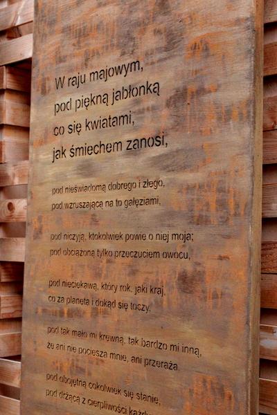 mediolan , expo , milano , wycieczka do mediolanu , ostra na slodko ,. sylwia ladyga , milan , duomo di milano , expo 2015 , polska na expo(207)