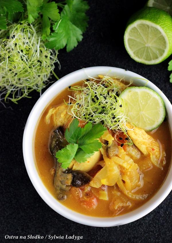 kurczak w sosie curry , kuchnia tajska , kuchnia orientalna , kurczak w sosie , kurczak na ostro , ostry kurczak , szybki obiad , blog kulinarny , ostra na slodko , sylwia ladyga, zolte curry , pasta curry