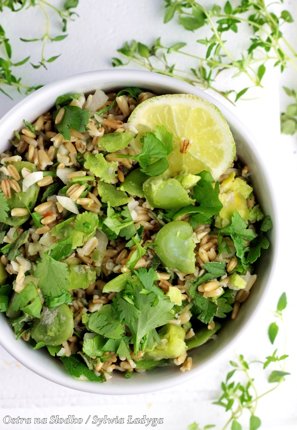 tabbouleh , kasza bulgur , salatka libanska , salatka z bobu , ostra na slodko , sylwia ladyga , blog kulinarny , przepis na salatke , fit przepisy (1)x