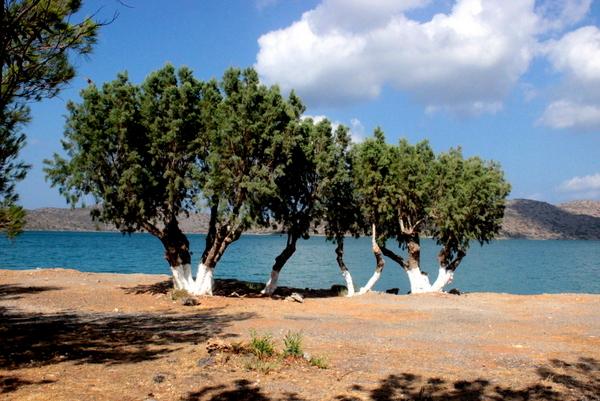 elounda , agios nikolaos , kreta , crete , ostra na slodko , sylwia ladyga , sylwia masterchef (42)