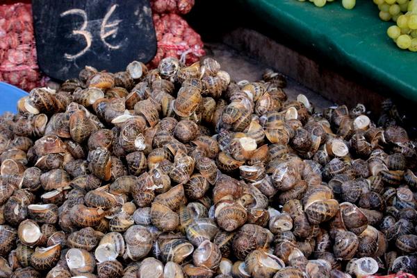 elounda , agios nikolaos , kreta , crete , ostra na slodko , sylwia ladyga , sylwia masterchef (9)